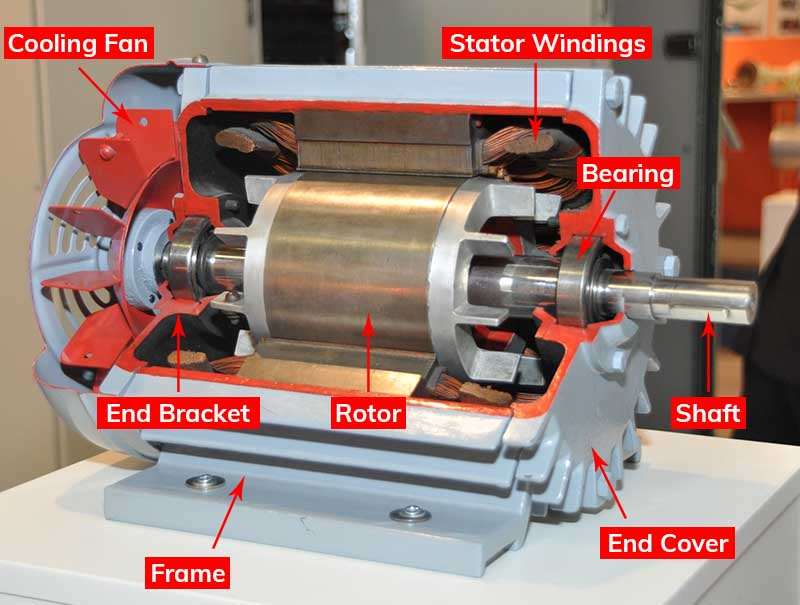 parts of an induction motor